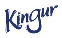 Kingur